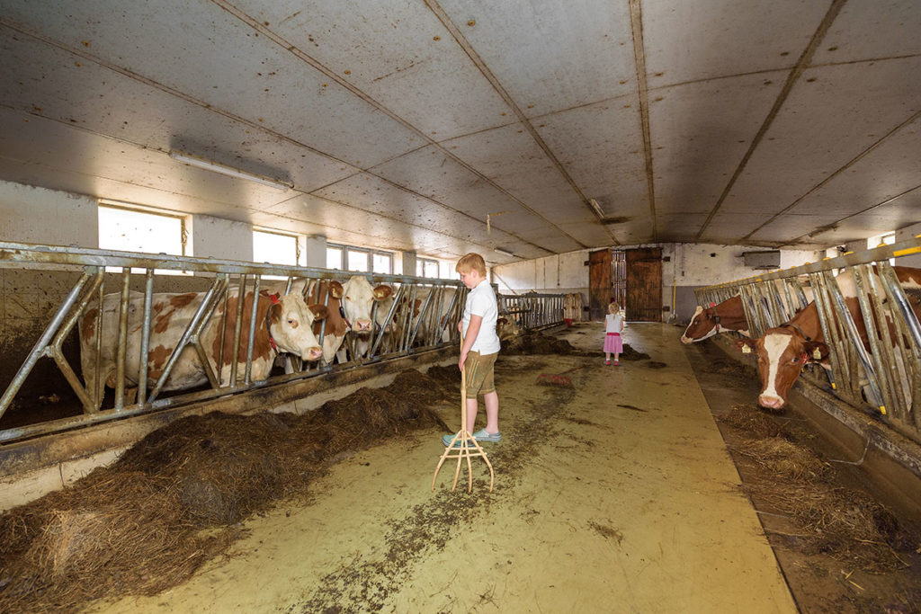 Urlaub am Bauernhof in Radstadt