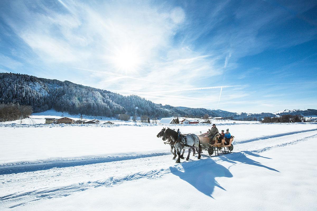 Pferdeschlittenfahrten - Winterurlaub in Radstadt