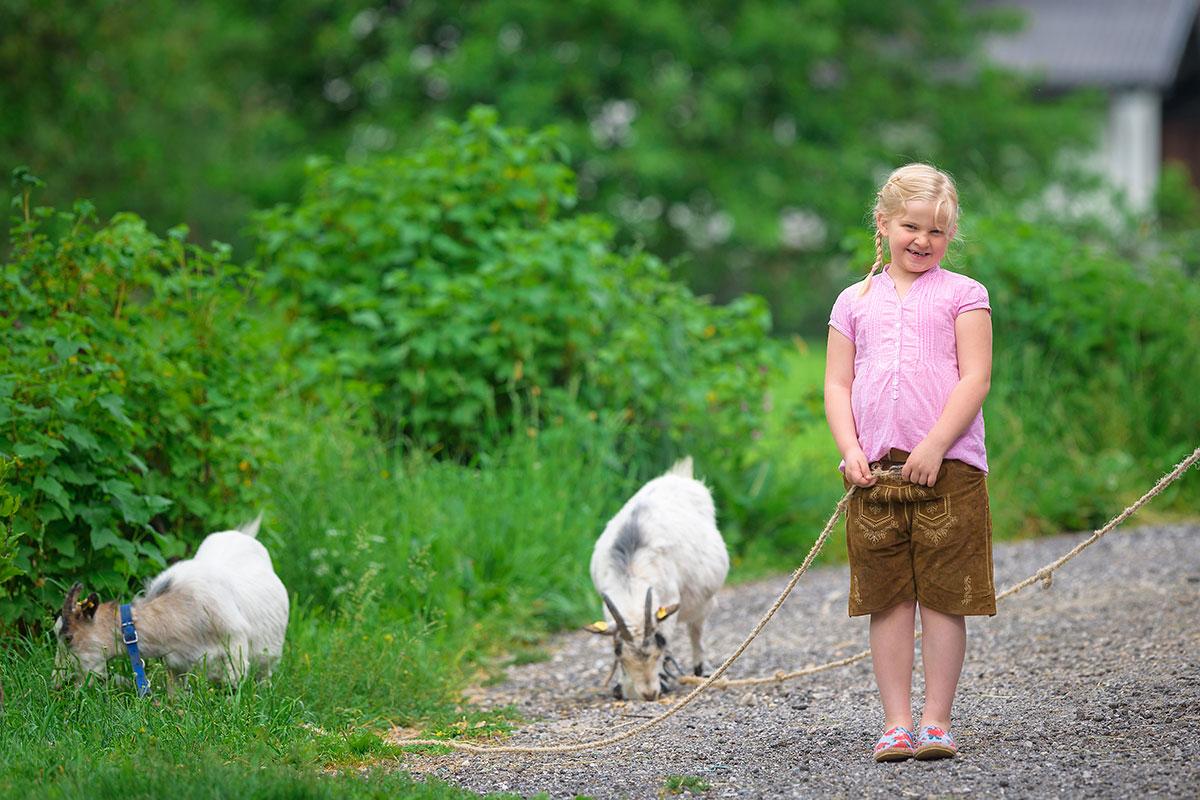 Ziegen - Bauernhofurlaub in Radstadt